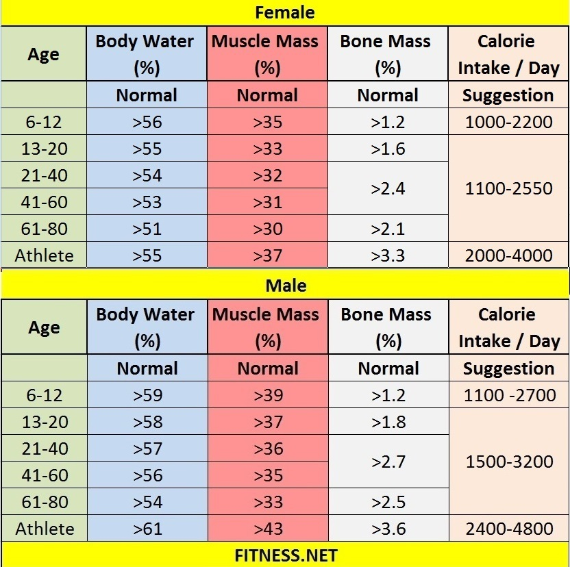 Everything about muscle mass percentage with charts fitness sports