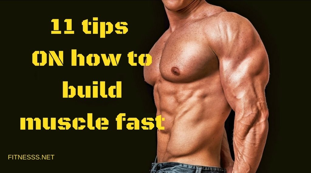 tips how to build muscle fast